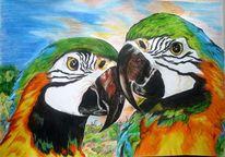 Tiere, Vogel, Papagei, Aquarellmalerei