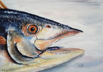 Stillleben, Fisch, Aquarell
