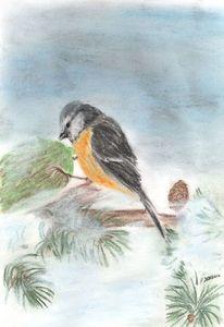 Kohlmeise, Tiere, Zeichnung, Vogel