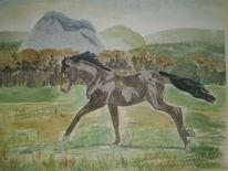 Pferde, Baum, Gras, Rappe