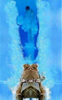 Schwimmer, Sport, Tauchen, Wasser