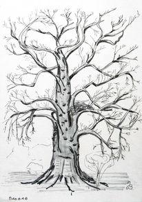 Baum, Tusche, Zeichnung, Afrika