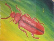 Käfer, Rot, Giftig, Gelb