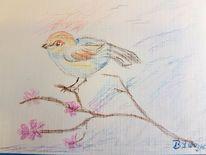 Vogel, Himmel, Ausdruck, Zweig