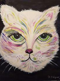 Freude, Katze, Moment, Farben