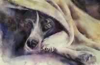 Aquarellmalerei, Tiere, Hund, Portrait