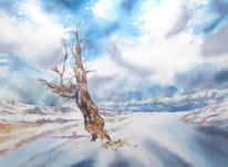 Rhön, Aquarellmalerei, Winter, Schnee