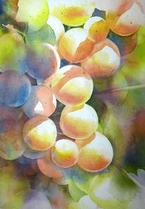 Weintrauben, Aquarellmalerei, Wein, Aquarell
