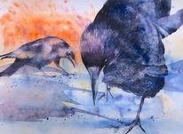 Krähe, Aquarellmalerei, Vogel, Rabe