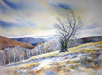 Aquarellmalerei, Hochrhön, Beech tree, Dezember