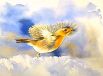 Winter, Fliegen, Aquarellmalerei, Kaltstart
