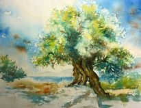 Oliv, Aquarellmalerei, Kefalonia, Griechenland