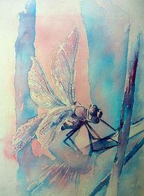 Insekten, Libelle, Aquarellmalerei, Aquarell