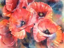 Mohnblumen, Aquarellmalerei, Mohn, Rot