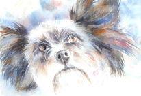 Hund, Aquarellmalerei, Pfeffer, Aquarell