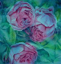Rose, Blumen, Aquarellmalerei, Alt