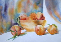 Früchte, Pfirsich, Peaches, Aquarellmalerei
