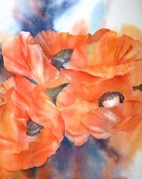 Mohnblüten, Aquarellmalerei, Mohnblumen, Rot
