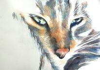 Tiere, Haustier, Katze, Aquarellmalerei