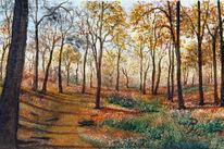 Wald, Acrylmalerei, Sonne, Natur