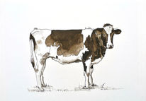 Sepia, Tuschezeichnung, Rind, Kuh