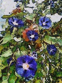 Pflanzen, Blumen, Elsass, Blau