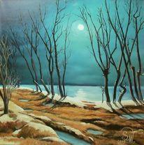 Nacht, Baum, See, Schnee