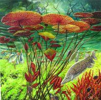 Unter wasser, Fische, Seerosen, Blätter
