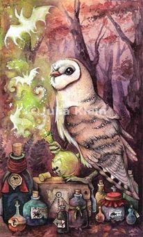 Schleiereule, Magie, Cartoon, Tiere