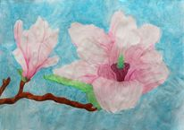 Magnolien, Blüte, Pastellmalerei, Malerei