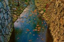 Landschaft, Wasser, Fotografie