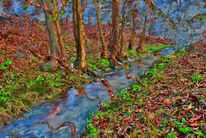 Digitale kunst, Landschaft, Fantasie, Pflanzen