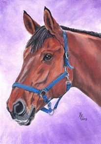 Pferdekopf, Pastellmalerei, Malerei, Pferde