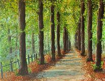 Baum, Park, Blätter, Gehen