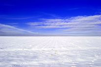 Horizont, Winter, Schnee, Landschaft