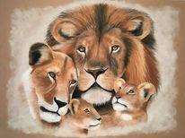 Wildtiere, Löwe, Portrait, Zeichnungen