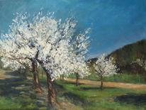 Blhende bäume, Frühling, Landschaft, Blüte
