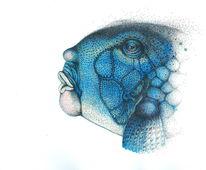 Gesicht, Portrait, Fisch, Punkt