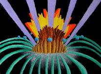 Synästhesie, Musik, Ölfarben, Malerei