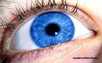 Iris, Augen, Wimpern, Fotografie