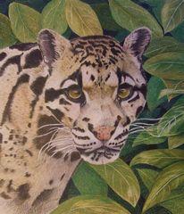 Fell, Prismacolor buntstifte, Zeichnungen, Leopard