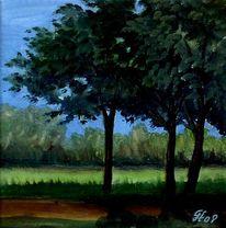 Baum, Wiese, Pflanzen, Gegenlicht
