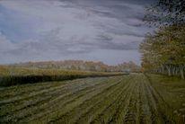 Maisfelder, Giesenweg, Feld, Malerei