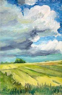 Wiese, Wolken, Wolkenschatten, Landschaft