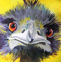 Emu, Bunt, Tiere, Possierlich