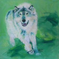 Weiß, Wolf, Acrylmalerei, Tiere
