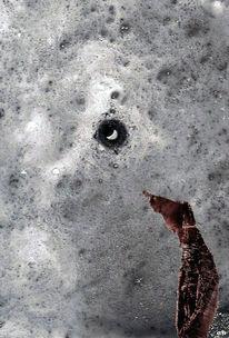 Augenblick, Maulwurf, Mond, Starren