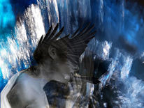 Haare, Flügel, Wasser, Regentonne