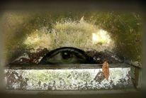 Kellerlichtschacht, Grau, Erblickt, Augen