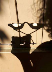 Brille, Schatten, Gartentüre, Fotografie